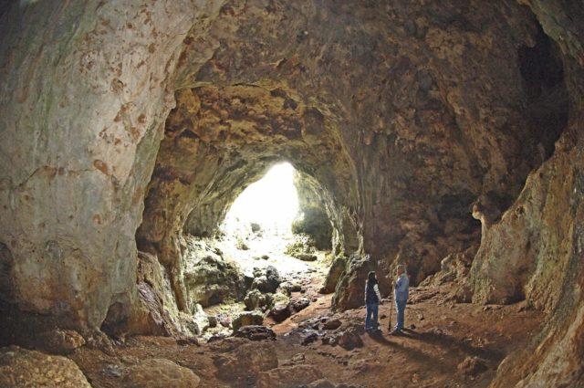 Ljubićeva pećina
